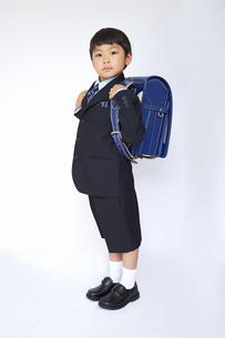 スーツで青いランドセルを背負う小学一年生の素材 [FYI01044216]