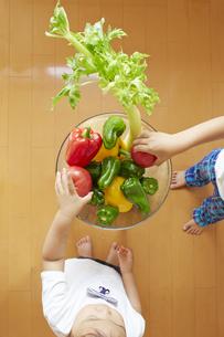 セロリやトマト、ピーマン、パプリカなどの野菜を選ぶ幼児と子供の素材 [FYI01044231]