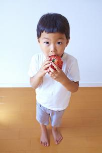 トマトをかぶりついて食べる子供の素材 [FYI01044235]