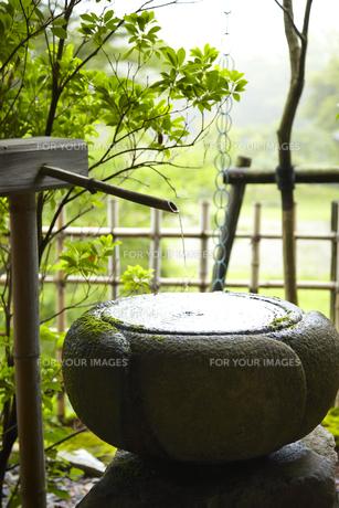 水鉢の素材 [FYI01044255]
