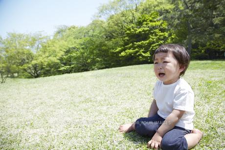 新緑に囲まれた芝生の上で泣く子供の素材 [FYI01044267]
