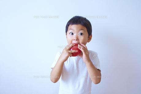 トマトをかぶりついて食べる子供の素材 [FYI01044336]