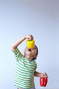 黄色のパプリカを食べようとする子供の素材 [FYI01044387]