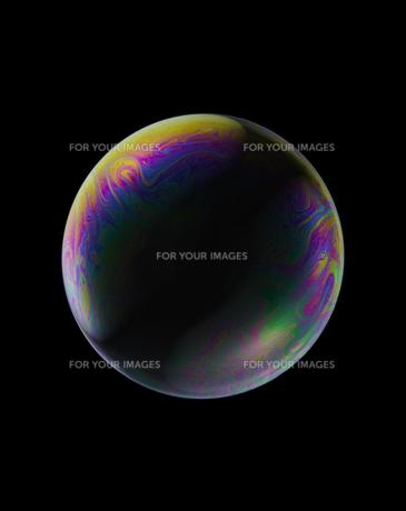 bubbleの素材 [FYI01046203]