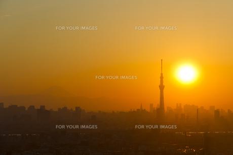 東京スカイツリーと夕日の素材 [FYI01048653]
