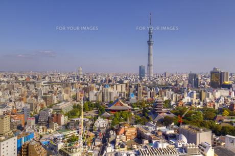 青空の東京スカイツリーと浅草の町並み 俯瞰の素材 [FYI01048740]