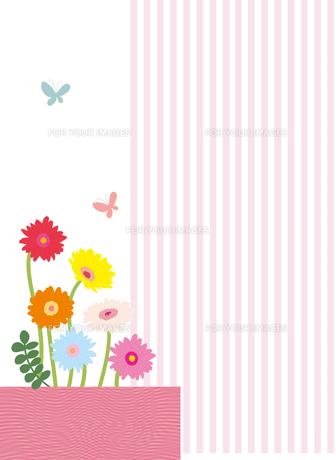 ガーベラと蝶とストライプの素材 [FYI01049510]