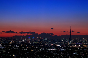 船堀より望む東京スカイツリーの夜景の素材 [FYI01050748]