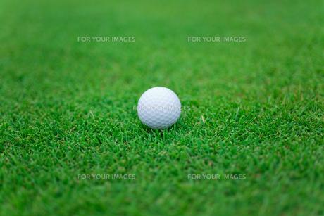 ゴルフボールの素材 [FYI01051830]