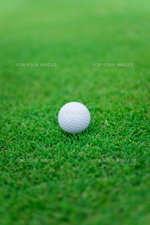 ゴルフボールの素材 [FYI01051902]