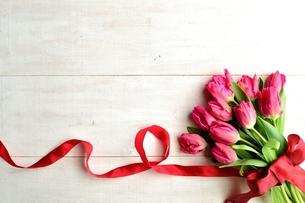 ピンクのチューリップの花束と赤いリボン 白木材背景の写真素材 [FYI01052270]