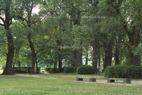 公園のベンチの素材 [FYI01053277]