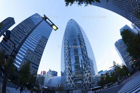 夕暮れの新宿高層ビル街の素材 [FYI01059817]