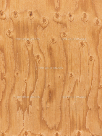 ベニヤ板の素材 [FYI01059823]