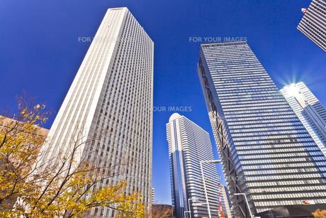 新宿高層ビル群の素材 [FYI01060749]