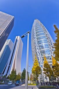 新宿高層ビル群の素材 [FYI01060754]