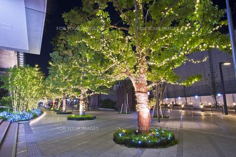 東京スカイツリータウンの夜景の素材 [FYI01060766]