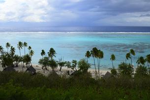 トアテアの展望台からヤシの木と砂浜を望むの素材 [FYI01061143]
