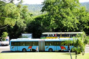 国立公園内のバスの素材 [FYI01061617]