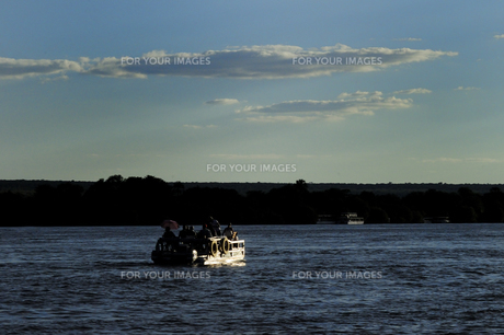 ザンベジ川のクルーズの素材 [FYI01061699]