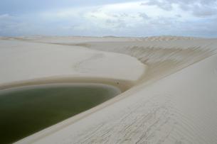 砂丘と池の素材 [FYI01062115]