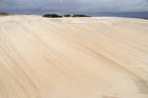 砂丘の素材 [FYI01062153]
