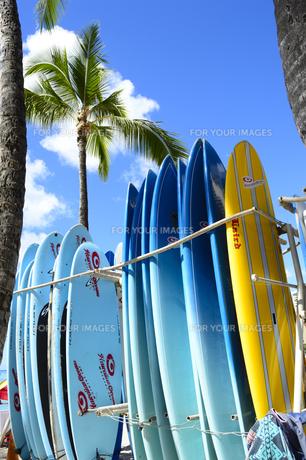 ワイキキビーチのサーフボードの素材 [FYI01063404]