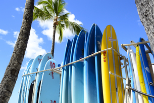 ワイキキビーチのサーフボードの素材 [FYI01063453]