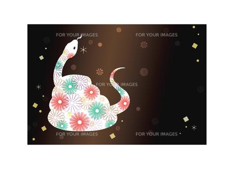 とぐろを巻く花柄白蛇(黒小花背景)の素材 [FYI01066282]