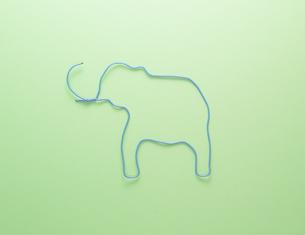 ゾウの素材 [FYI01073703]