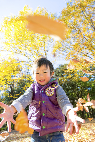 秋の公園で落葉を投げて遊ぶ男の子の素材 [FYI01075016]