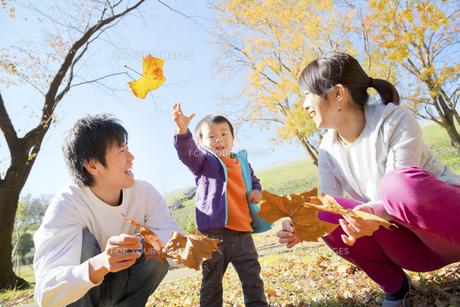秋の公園で落葉で遊ぶ親子の素材 [FYI01075027]