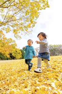 秋の公園を走る男の子と女の子の素材 [FYI01075029]