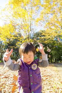 秋の公園で落葉を投げて遊ぶ男の子の素材 [FYI01075034]