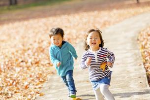 秋の公園を走る男の子と女の子の素材 [FYI01075043]