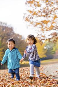 秋の公園を走る男の子と女の子の素材 [FYI01075049]
