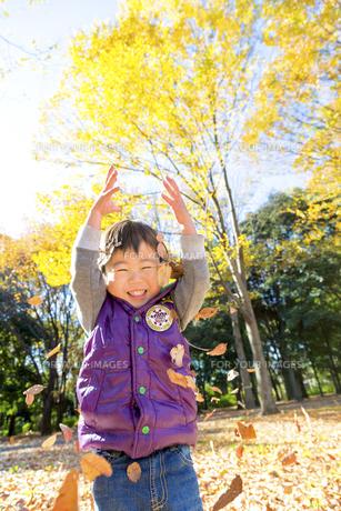 秋の公園で落葉を投げて遊ぶ男の子の素材 [FYI01075052]