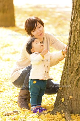秋の公園で遊ぶ息子と母親の素材 [FYI01075054]