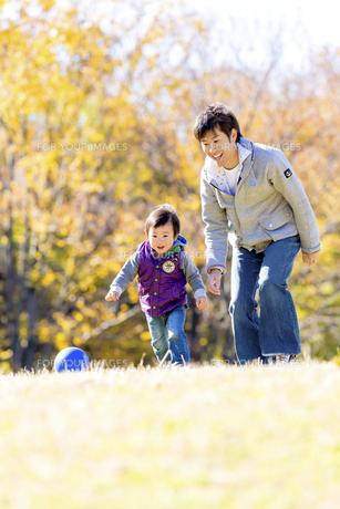 秋の公園でボール遊びをする息子と父親の素材 [FYI01075056]