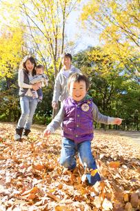 秋の公園で遊ぶ4人家族の素材 [FYI01075059]