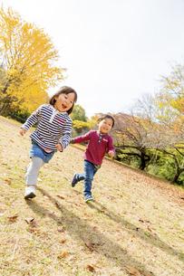 秋の公園を走る男の子と女の子の素材 [FYI01075084]