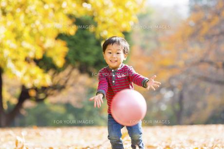 秋の公園でボール遊びをする男の子の素材 [FYI01075088]