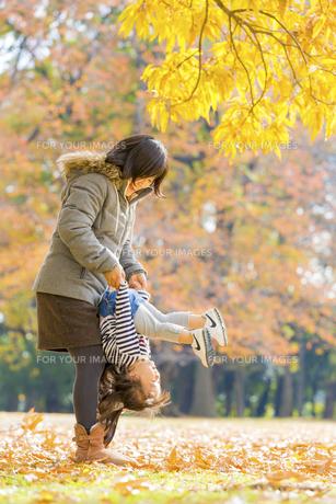 秋の公園で遊ぶ娘と母親の素材 [FYI01075095]