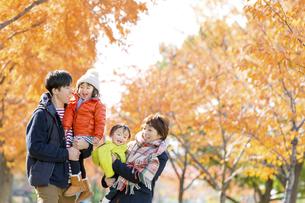 秋の公園を歩く4人家族の素材 [FYI01075101]
