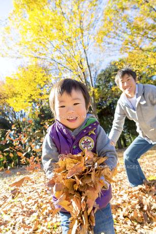 秋の公園で遊ぶ息子と父親の素材 [FYI01075105]