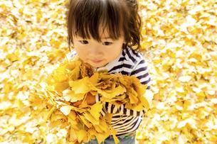 秋の公園で落葉を抱える女の子の素材 [FYI01075112]