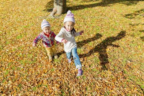 秋の公園を走る姉と弟の素材 [FYI01075115]