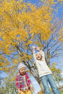 秋の公園で落葉を投げる姉と弟の素材 [FYI01075117]