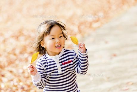 秋の公園で落葉で遊ぶ女の子の素材 [FYI01075124]
