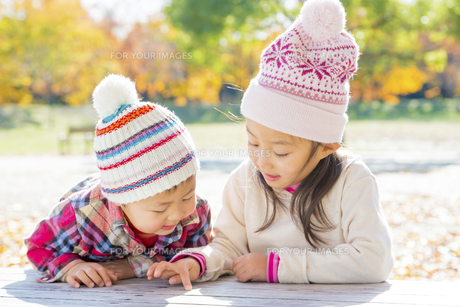 秋の公園で遊ぶ姉と弟の素材 [FYI01075125]
